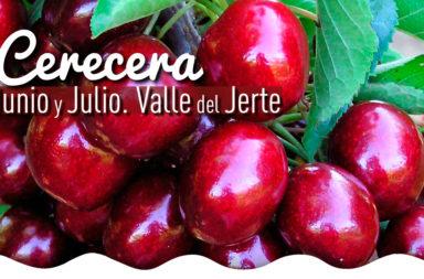 Cerecera 2017 en el Valle del Jerte