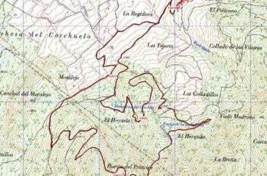 Otoño Mágico: VII Carrera por Montaña Subida a los Campanarios