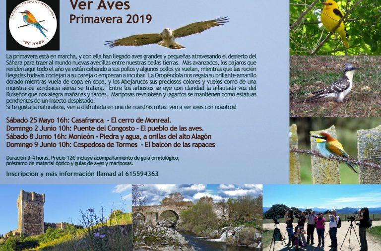 Programación Ver Aves Final de Primavera