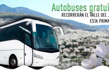autobuses-valle-del-jerte-cerezo-en-flor.jpg