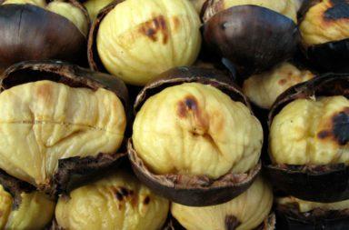 Calbotada, Chocolate, Ruta y Cine en San Esteban de la Sierra