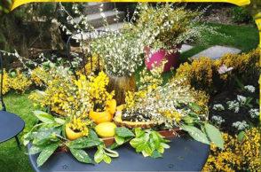 Piornos en Flor 2017: Concurso de decoración de exteriores el 20 de mayo y el 3 de junio