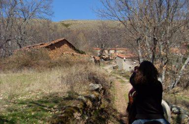 horses_gredos_rutas_a_caballo_01.JPG
