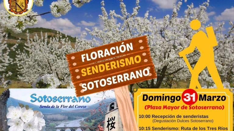 Ruta del Cerezo en Flor en Sotoserrano