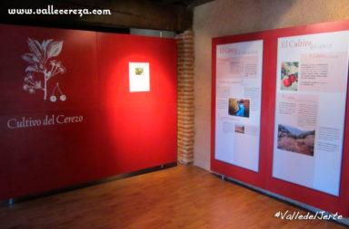 Museo de la cereza