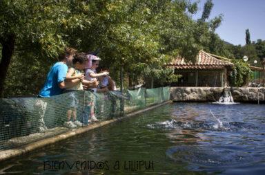 Centro de reproducción de salmónidos