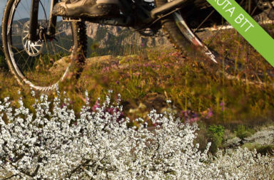 'IX Ruta BTT del Cerezo en Flor' el 2 de abril en Cabezuela del Valle (Valle del Jerte)