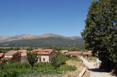 Ruta senderista por Umbrías de Sierra de Gredos